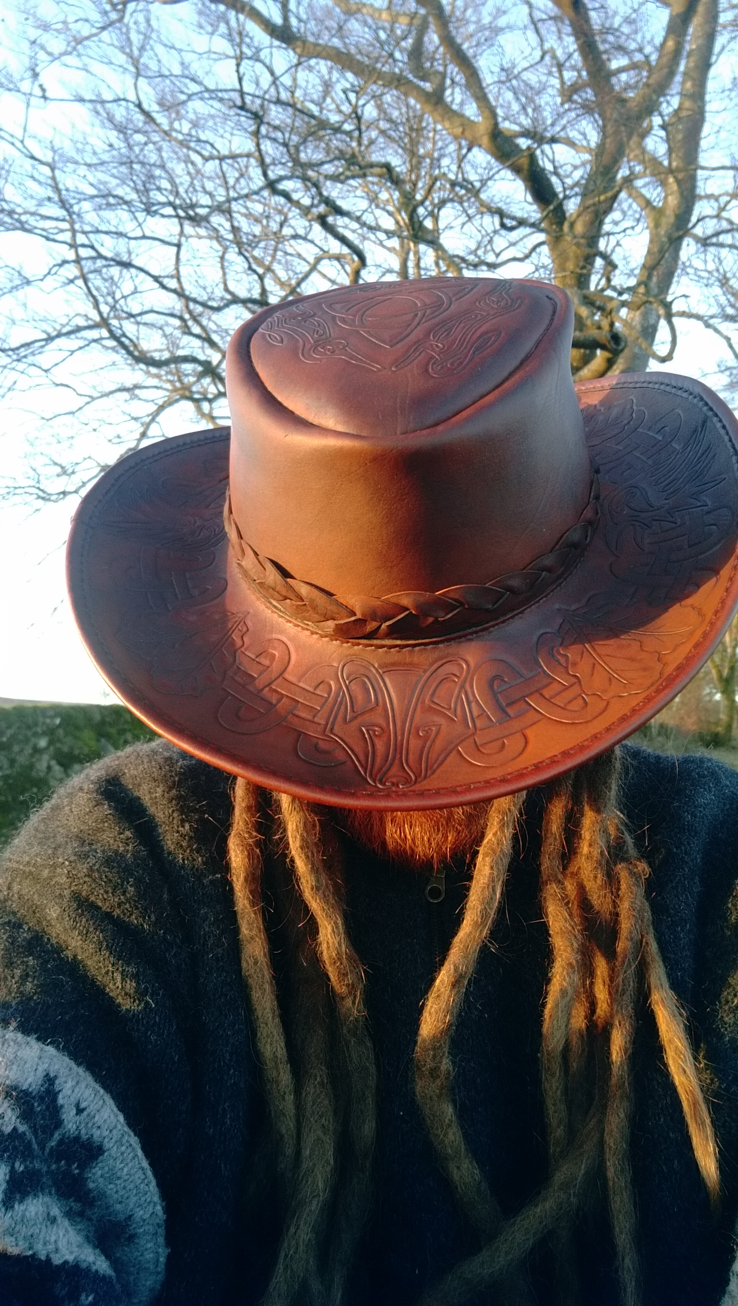 Celtic animals hat
