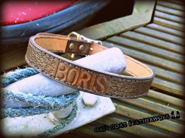 'Boris' Collar