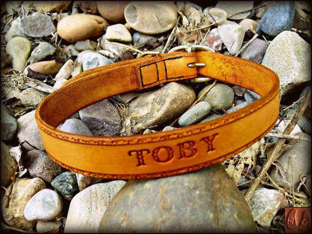 'Toby' Collar