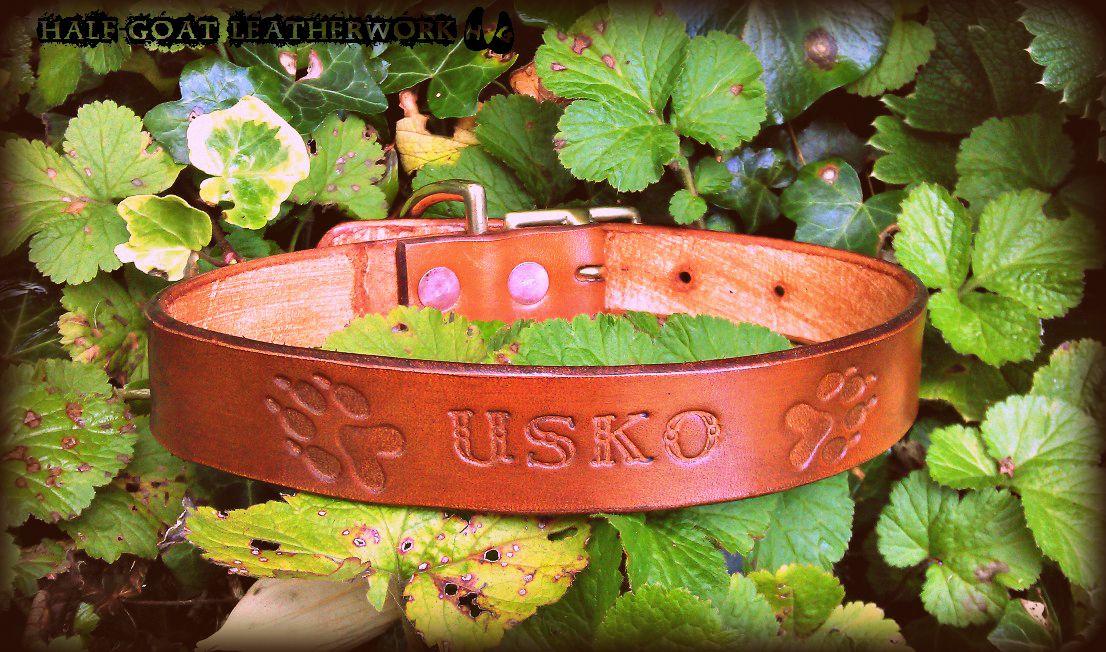 'Usko' Collar
