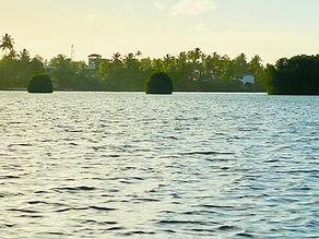 川の風景.jpeg