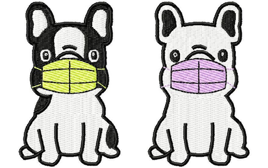 chien masque