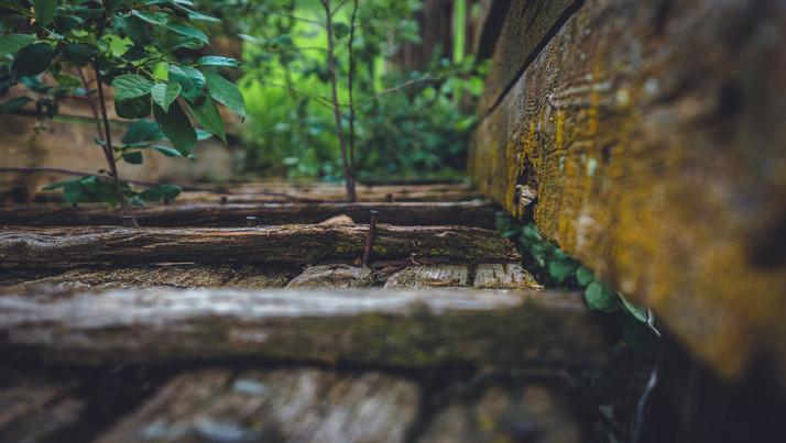 Wood Mini World.jpg