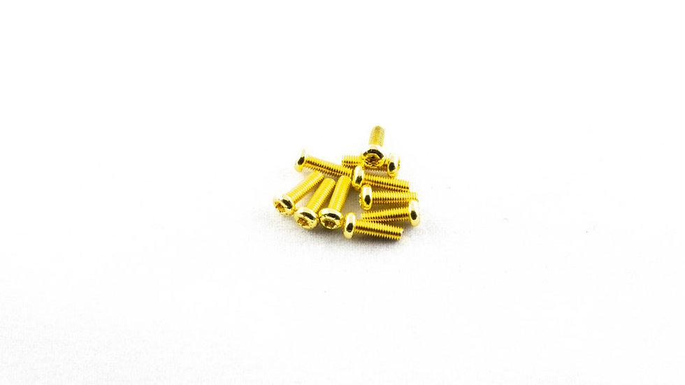 10 x 10mm Gold Torx screws