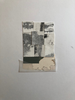 Collage 8