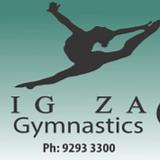 Zig Zag Logo.png