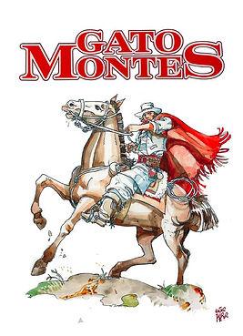 de Pages en Plages   Gato Montes