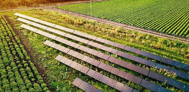 Sustentabilidade-e-Agroneg%C3%B3cio_edit
