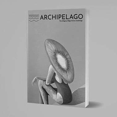 Archipelago+Issue+02.medium+book.jpg