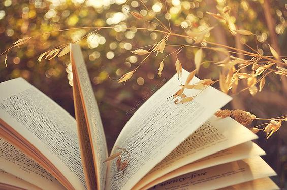 Libro Fonde de Pantalla.jpg