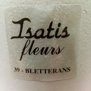 Isatis-fleurs.jpg