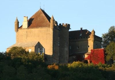 chateau de frontenay.jpg