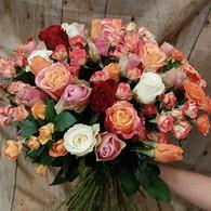 Isatis-fleurs1.jpg