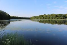 Les étangs de la Bresse Jurassienne