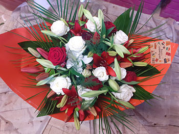 Isatis-fleurs4.jpg