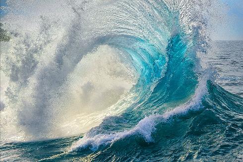 Ocean Bridge Media wave.PL