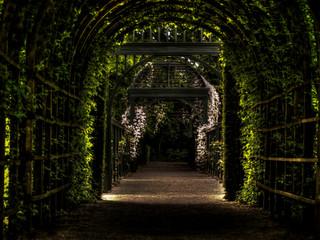 Cultivate Your Inner Garden