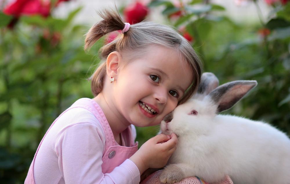 Girl petting white rabbit