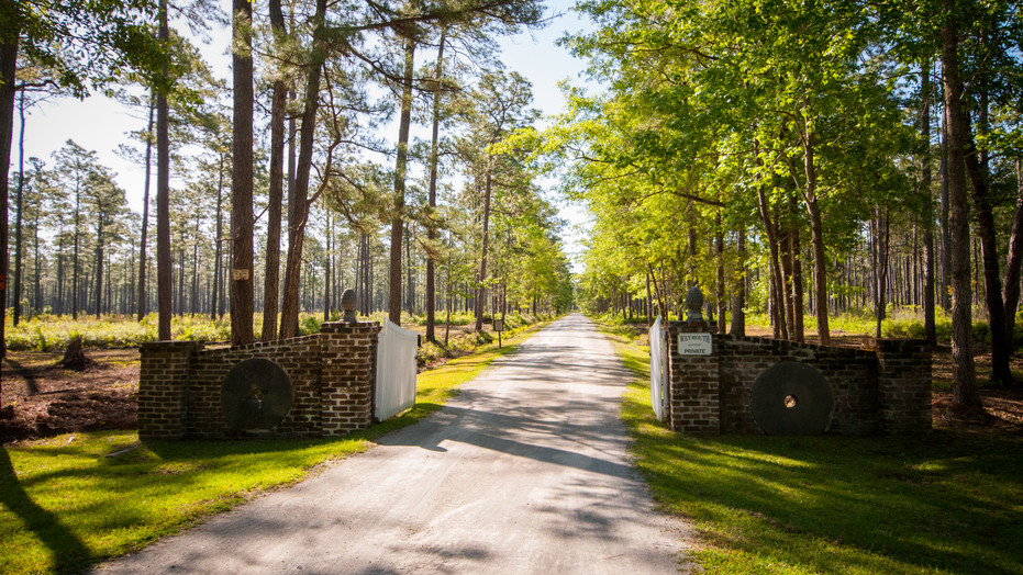 914± acre historic rice plantation located in Georgetown, South Carolina, on the Pee Dee River and features a charming main house surrounding by live oaks and great wildlife and wingshooting.