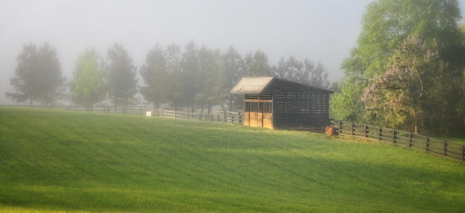 Fork Farm 00049.jpg