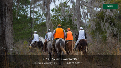 Pinehaven Plantation is a 4,368± acre quail plantation in the Red Hills region of North Florida on the Georgia line just twenty minutes south of Thomasville.