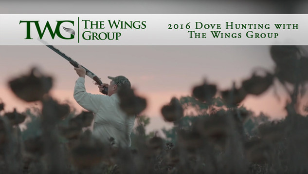 2016 Dove Hunting with The Wings Group