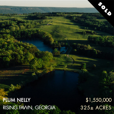 Nestled in a gorgeous and quiet area on Lookout Mountain, these gently rolling 325± acres are known as Plum Nelly Farm. Only 30 minutes from downtown Chattanooga, the farm's convenient location offers the perfect balance of a pastoral retreat and urban entertainment. With nearly half of the farm in well-maintained pastures, it provides the perfect setting for a small cattle operation or other agricultural endeavors. The property also has fantastic water resources with an 8± acre mountain lake that is often stocked with trout, a smaller 2± acre bream and bass fishing pond, four cattle ponds and Daniel Creek that originates on the property from a spring.  Located in the far northwest corner of Georgia, Plum Nelly is just two hours from Atlanta, Birmingham and Nashville.