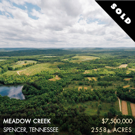 Meadow Creek exemplifies the finest hunting and fishing opportunities to be found in middle Tennessee.  A QDM program has been in place for several years producing trophy bucks year-in and year-out, and the turkey hunting represents the best of the southeast, which is a big statement. The wildlife flock from this safe haven to the managed food plots and grounds of Meadow Creek allowing the property to support large populations of deer and turkey. Over the last twenty years, a release program has been fine-tuned to offer a quail hunting experience that gives bird hunters a glimpse of the good old days. This is a true quail  hunt  that  awards  you with stron flying covey rises.