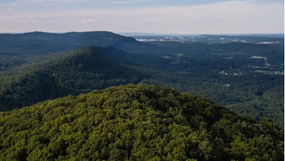 Located on Lookout Mountain with nearly a mile of sensational eastern brow views, Hawk Bluff offers a unique opportunity to own 228± acres that is only 13 miles from downtown Chattanooga plus the added benefit of being surrounded by a significant landscape of protected lands, much of which offers public access for a myriad of recreational activities. Virtually surrounded by protected land, Hawk Bluff feels and operates much larger than its actual size. The Cloudland Canyon Connector trailhead is located adjacent to the property's entrance and provides excellent access to miles upon miles of trails to be enjoyed from your own backyard.There is no conservation easement on this property, which affords a new owner maximum opportunity to pursue any interests they desire.