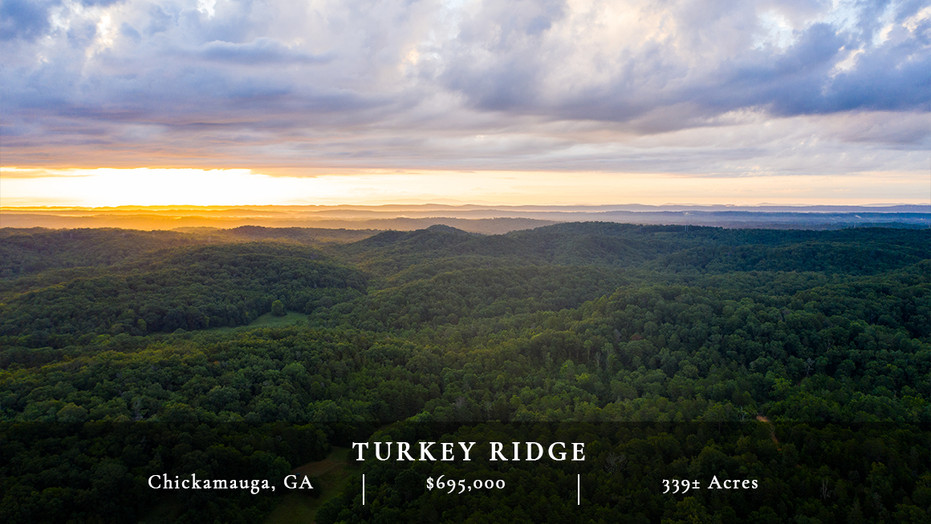Turkey Ridge is 339± acres of undeveloped land located in a highly sought-after area just 30 minutes south of downtown Chattanooga, TN and near the community of Chickamauga, GA.  Located within a pastoral setting of North Georgia, this property has a rolling topography with some nice elevation and house sites that would offer great views of the surrounding valley.