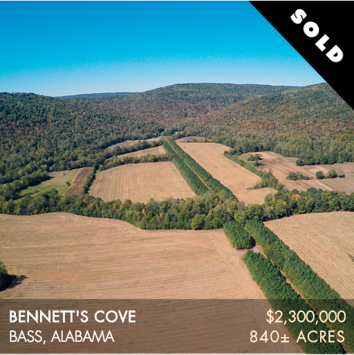 Bennett's Cove is 840± acres located in Northeast Alabama offering grand views of the surrounding Cumberland Plateau. In the valley, the property encompasses a few hundred acres of fertile farmland and wildlife food plots. It has great neighbors and is surrounded by other large agricultural farms and the 60,000+ acre Skyline WMA. The farm is tucked into a corner of Jackson County that is very private and peaceful offering a quiet retreat. The hunting is fantastic at Bennett's Cove. Its remote location offers the ability to manage for trophy deer and it does indeed produce big bucks. The turkey hunting is phenomenal and a prize dove field could be put in place as well.