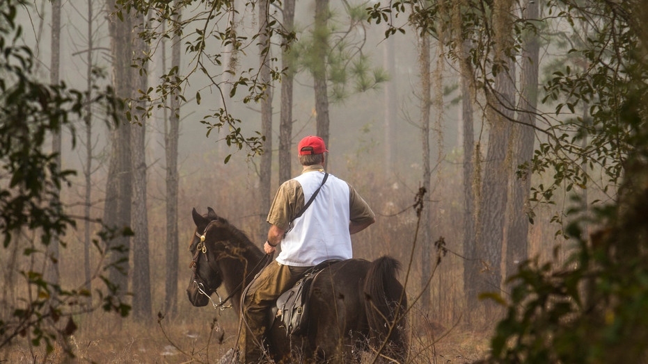 4,563 acre wild quail plantation in the Red Hills region between Thomasville, Georgia, and Tallahassee, Florida, surrounded by other world-class plantations and featuring some of the best wing-shooting found in this country.