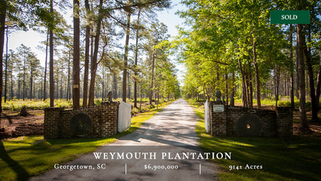 914± acre historic rice plantation located in Georgetown, South Carolina, on the Pee Dee River and features a charming main house surrounded by live oaks and great wildlife and wingshooting.
