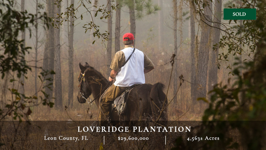 4,563± acre wild quail plantation in the Red Hills region between Thomasville, Georgia, and Tallahassee, Florida, surrounded by other world-class plantations and featuring some of the best wing-shooting found in this country.