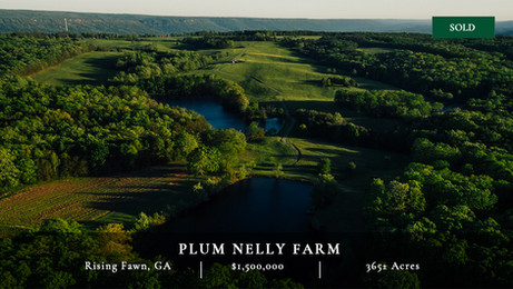 Located in the most desireable part of McLemore cove is this 324± acre farm.  Ideal equestrian or cattle property.