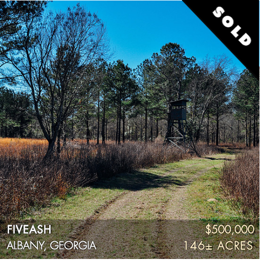 This property is located a short distance northeast of Albany, GA in Worth County. Only a stone's throw from several of the area's prestigious plantations, it offers fantastic deer and quail hunting. There are also 60 acres of non-irrigated farmland. Much of this farm has strong potential to be converted to agriculture and it includes a creek that runs through the southern portion of the property.