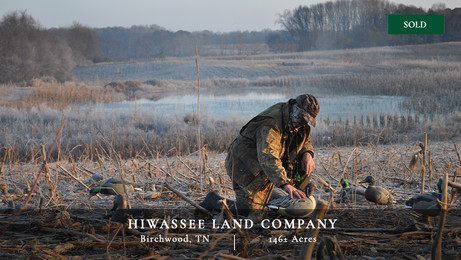 Impressive duck hunting property located in East Tennessee.  Surrounded by a refuge on three sides.