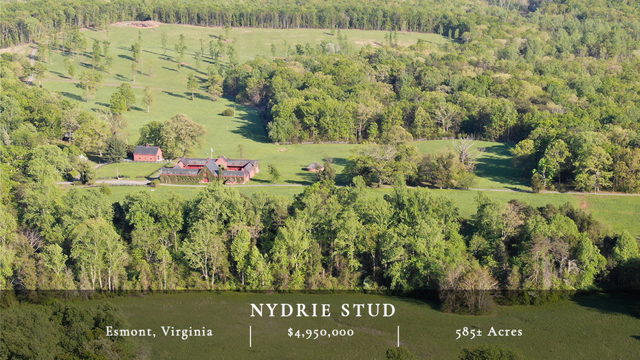 585± rolling acres located just south of Charlottesville, VA. Private yet convenient, Nydrie features an historic 20-stall brick barn and has significant equestrian and recreational potential.