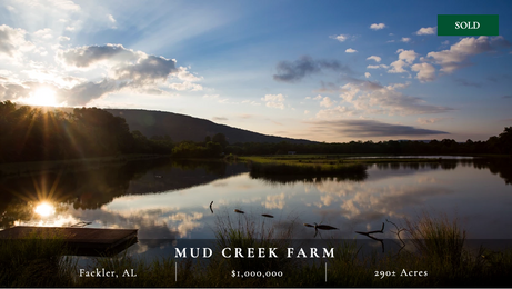 290± acre farm in northeast Alabama near Scottsboro.  14-acre trophy bass lake.  One mile of Mud Creek.  Great waterfowl hunting potential.  Excellent hunting and terrain diversity.  Small cabin.  Great location.