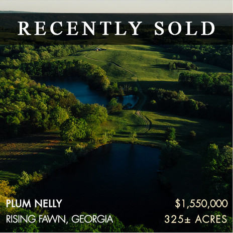 Nestled in a gorgeous and quiet area on Lookout Mountain, these gently rolling 325± acres are known as Plum Nelly Farm. Only 30 minutes from downtown Chattanooga, the farm's convenient location offers the perfect balance of a pastoral retreat and urban entertainment.