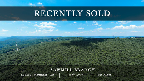 123± acres of rolling mature forest just 15 minutes outside of Chattanooga, TN
