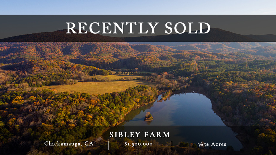 Sibley Farm is a 365± acre pastoral landscape in the heart of McLemore Cove. It is a quintessential Cove farm with spectacular views and gradual rolling hills.