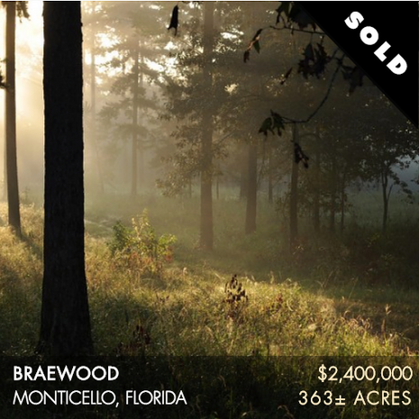 Braewood is 363± acres situated in the heart of the Red Hills Plantation belt and is considered some of the most sought-after dirt. The landscape is remarkably scenic consisting of tall pines, tremendous live oaks, dangling Spanish moss, and sweeping stands of wiregrass that span the horizon. Highly productive quail plantations encompass Braewood and its immediate neighbors are Sunny Hill, Wildwood and Beechwood Plantation. Norias, Kelly Pond and Pinehaven are all just a stone's throw away. The property is only 15 minutes from Thomasville and 25 minutes from Tallahassee.