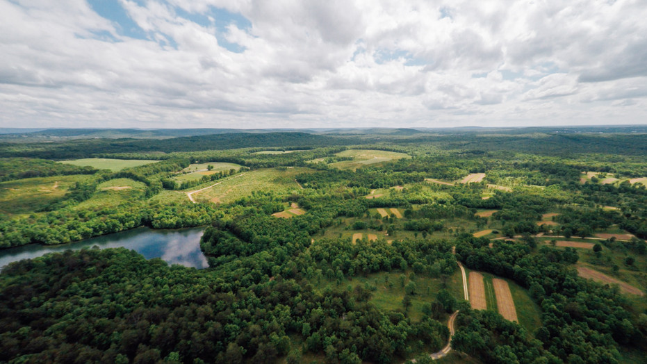 Sensational 2,558± acre hunting property.  Trophy bucks, incredible turkey hunting, and a phenomenal quail program.  Borders Fall Creek Falls State Park, a 26,000-acre wildlife sanctuary.  65± acre lake provides excellent fishing.  Lakesides cabin.