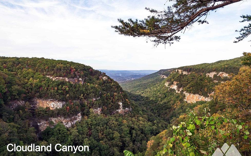 cloudland-canyon_edited.jpg