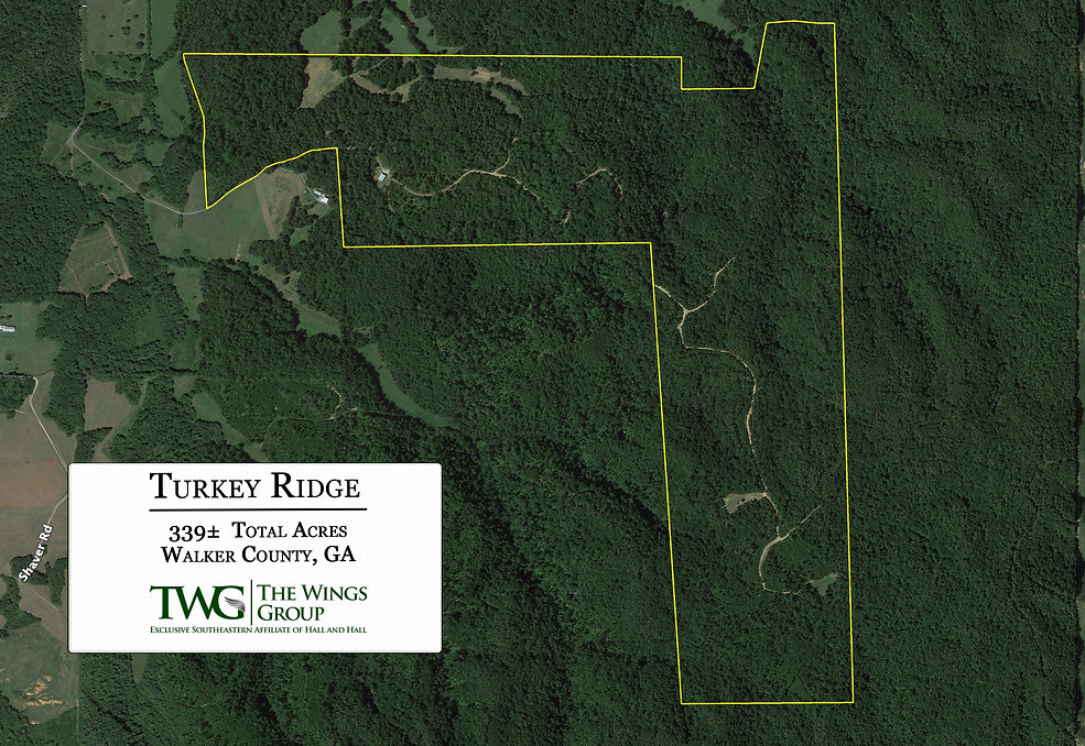 Turkey Ridge Aerial.jpg