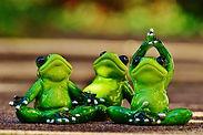 frogs-1030279_960_720.jpg