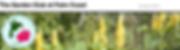 Screen Shot 2020-02-12 at 6.02.03 PM.png