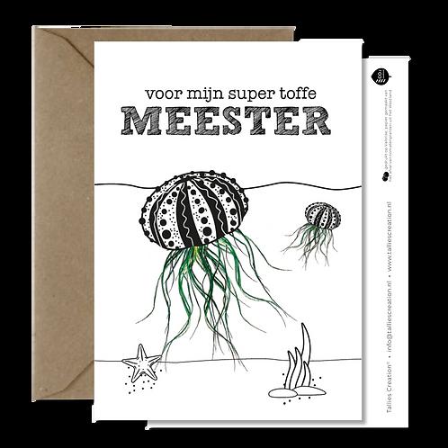 Meester - Plant wenskaarten