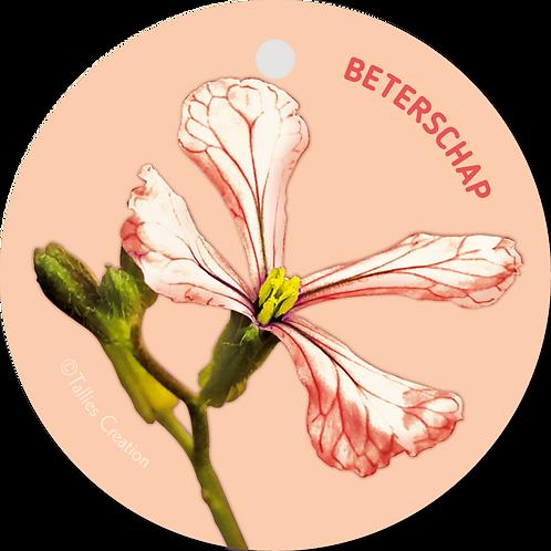 Beterschap - Flowerpower - set van 5 kaarten
